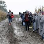 'De Migratiecoalitie' wil een samenhangend migratiebeleid